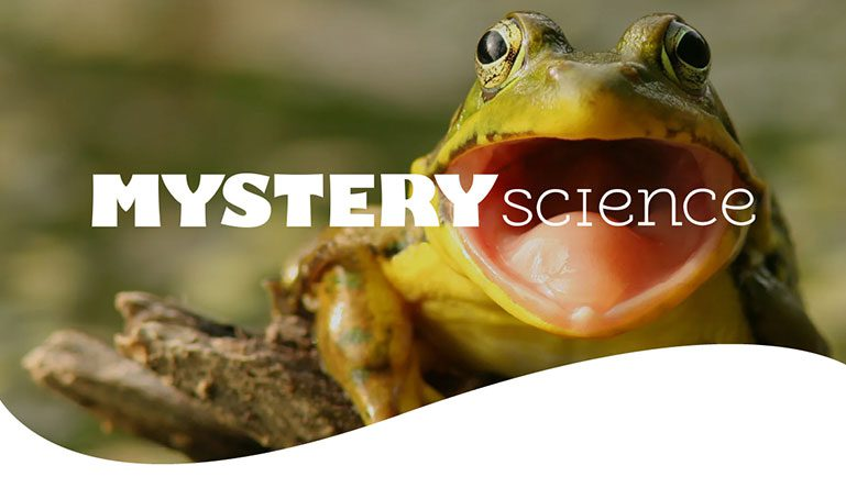 Discovery Education acquires Mystery Science